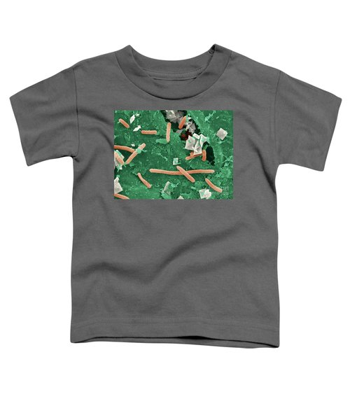 Baby Spinach Infected With E. Coli Toddler T-Shirt