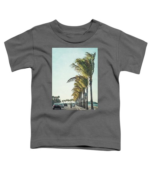 Back Down South Toddler T-Shirt