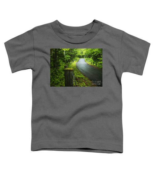 Back Road Toddler T-Shirt