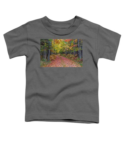 Back Road Color Tour  Toddler T-Shirt