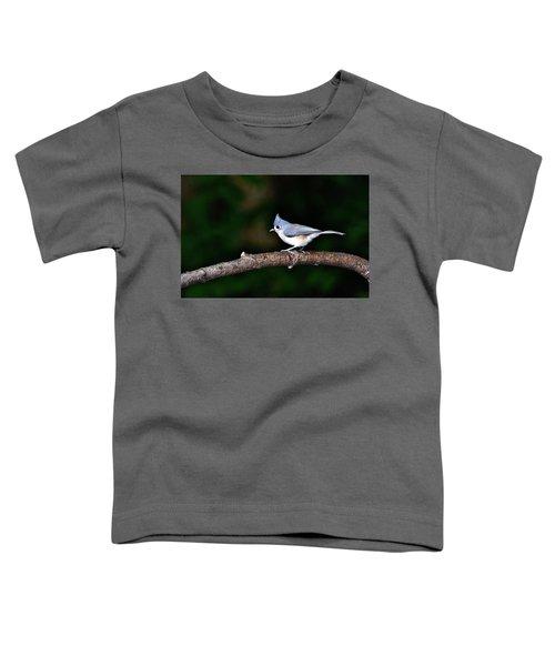 Back Yard Bird Toddler T-Shirt
