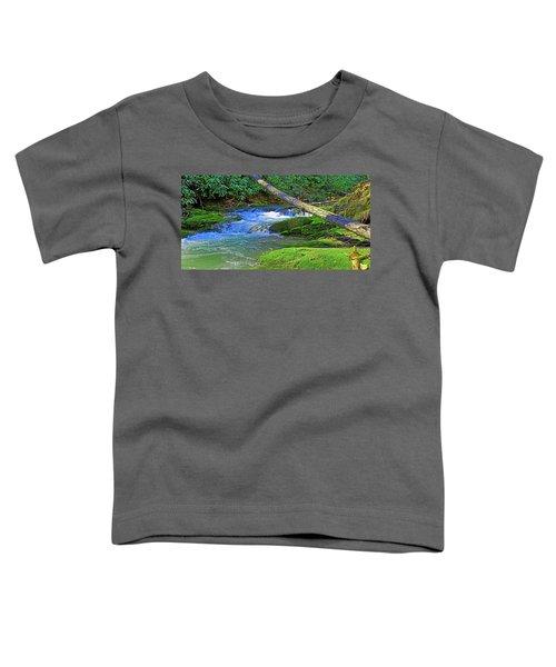 Backwoods Stream Toddler T-Shirt