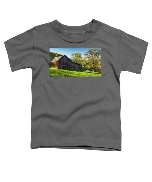 Bad Axe Barn Toddler T-Shirt