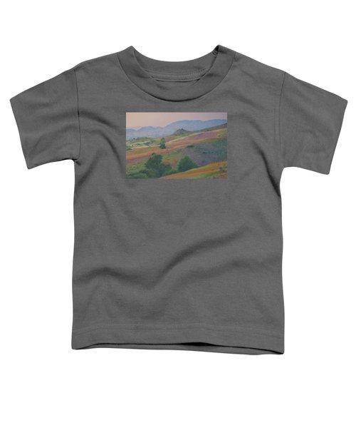 Badlands In July Toddler T-Shirt