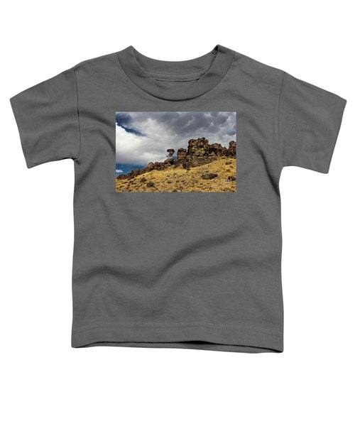 Balanced Rock Adventure Photography By Kaylyn Franks Toddler T-Shirt