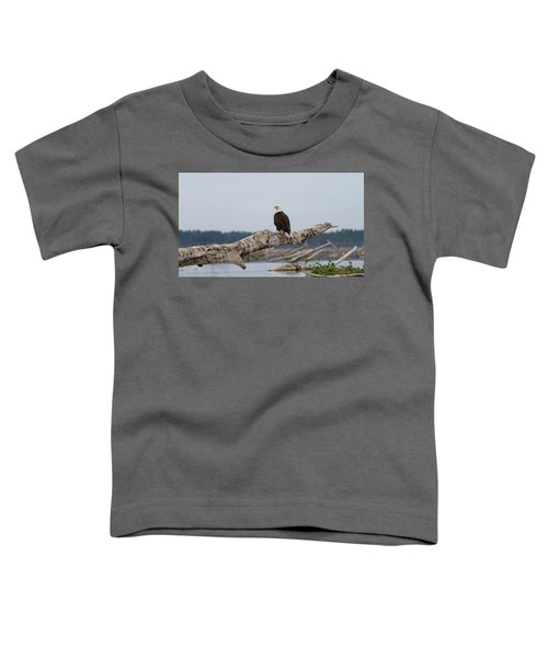 Bald Eagle #1 Toddler T-Shirt