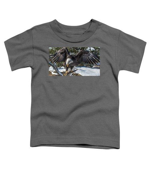 Bald Eagle Spread Toddler T-Shirt