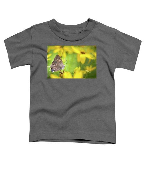 Banded Hairstreak On Coreopsis Toddler T-Shirt