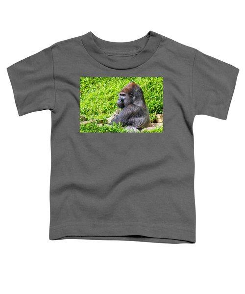 Baraka - Western Lowalnd Silverback Gorilla Toddler T-Shirt