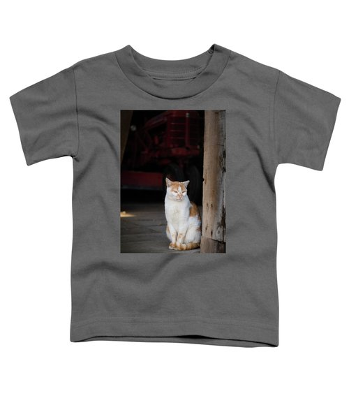 Barn Cat And Tractor Toddler T-Shirt