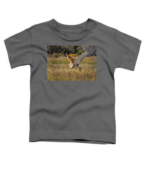 Barn Owl Flight 6 Toddler T-Shirt
