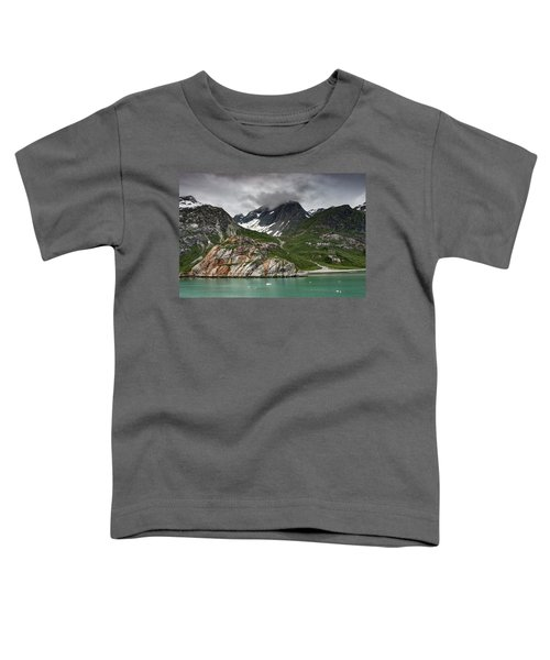 Barren Wilderness Toddler T-Shirt
