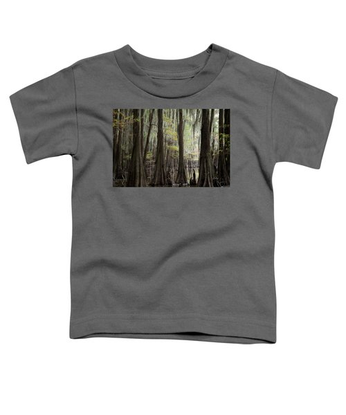 Bayou Trees Toddler T-Shirt