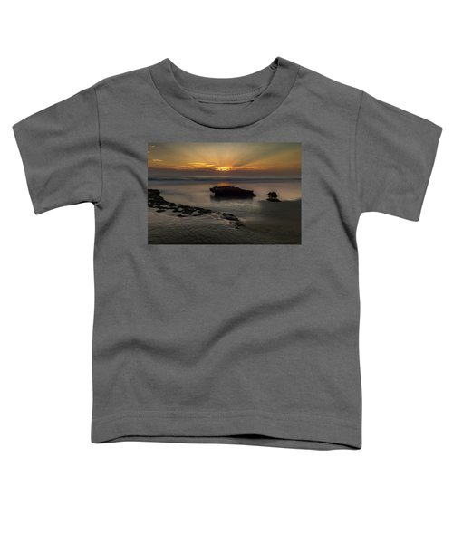 Beamscape Toddler T-Shirt