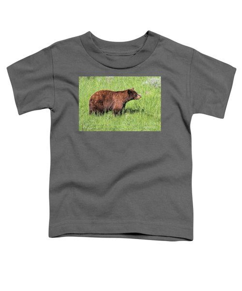 Bear Eating Daisies Toddler T-Shirt