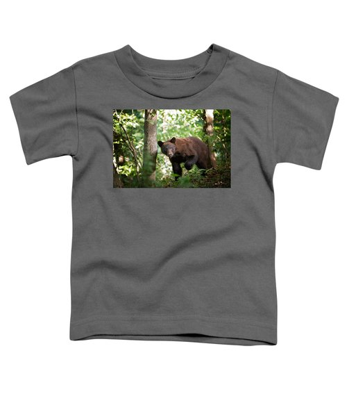 Bear In The Woods Toddler T-Shirt