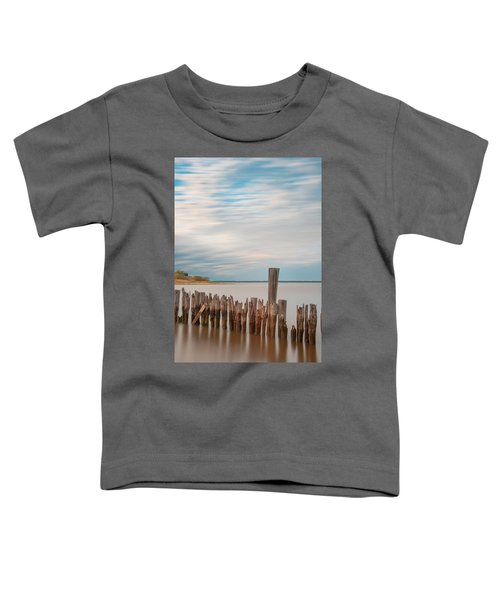 Beautiful Aging Pilings In Keyport Toddler T-Shirt
