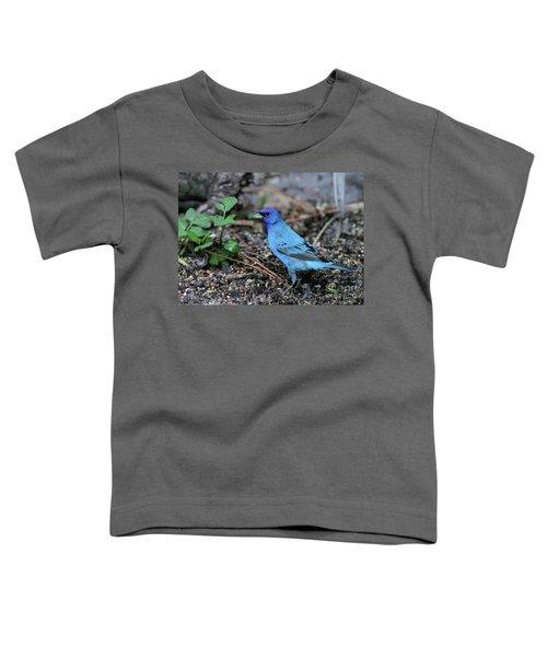 Beautiful Indigo Bunting Toddler T-Shirt