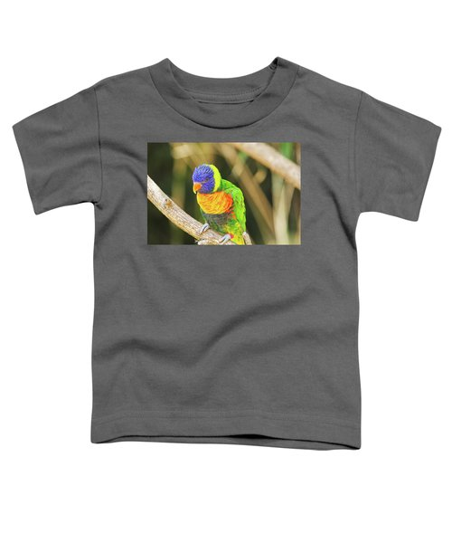 Beautiful Perched Mccaw On A Branch. Toddler T-Shirt