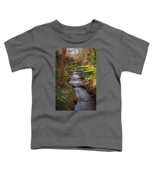 Beautiful Stream Toddler T-Shirt