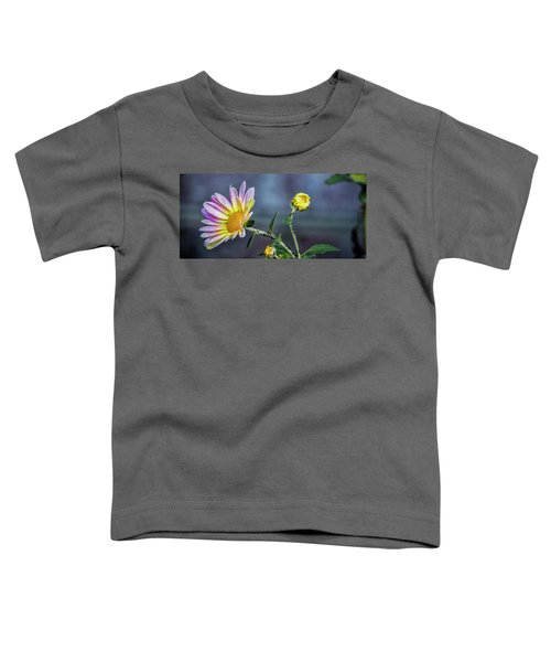 Beauty And The Beasts Toddler T-Shirt