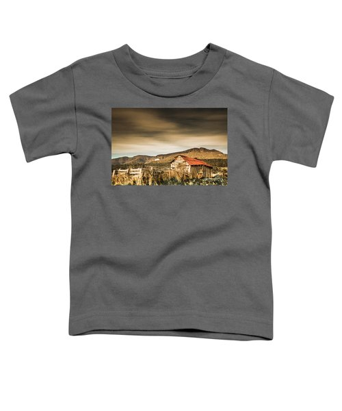 Beauty In Rural Dilapidation Toddler T-Shirt