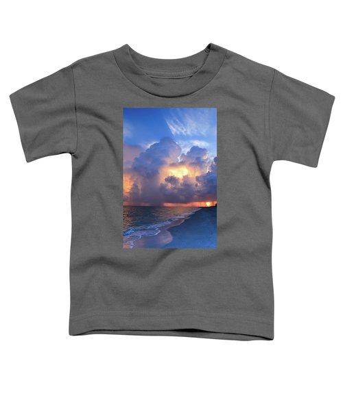 Beauty In The Darkest Skies II Toddler T-Shirt
