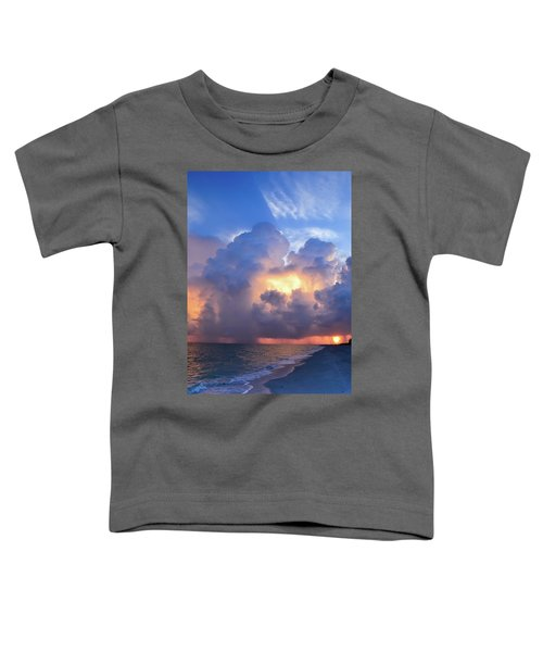 Beauty In The Darkest Skies II Toddler T-Shirt