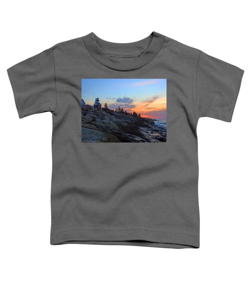 Beauty On The Rocks Toddler T-Shirt