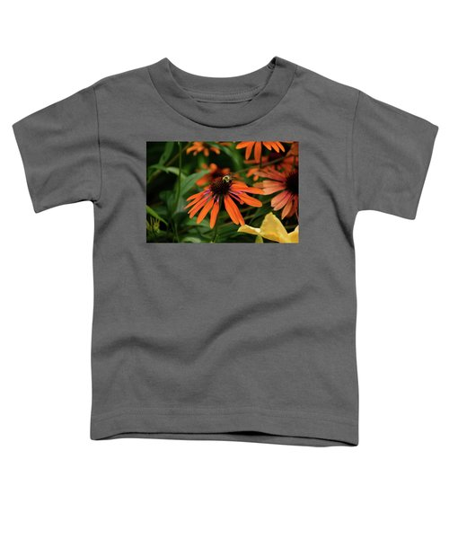 Bee Pollinating On A Cone Flower Toddler T-Shirt