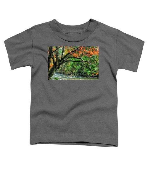 Beech Tree And Swinging Bridge Toddler T-Shirt