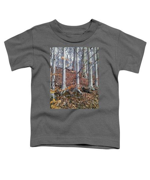 Beech Trees Toddler T-Shirt