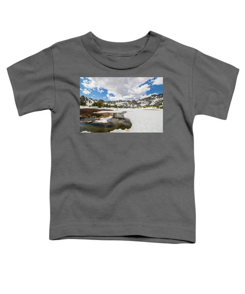Beehive Basin Stream Toddler T-Shirt