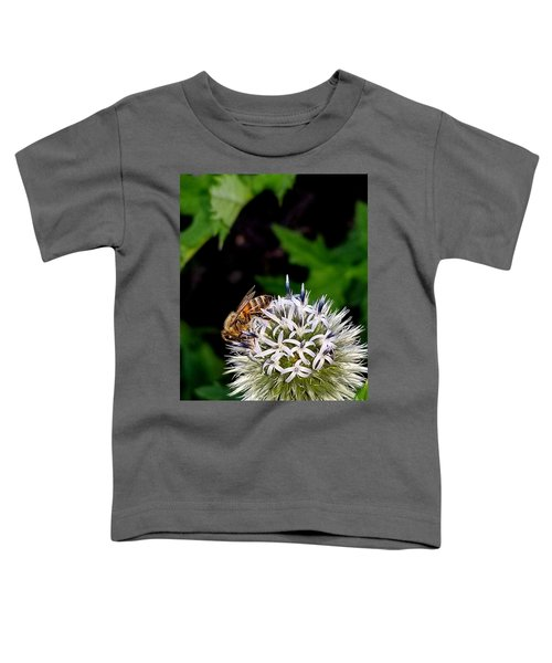 Beeing Seen Toddler T-Shirt