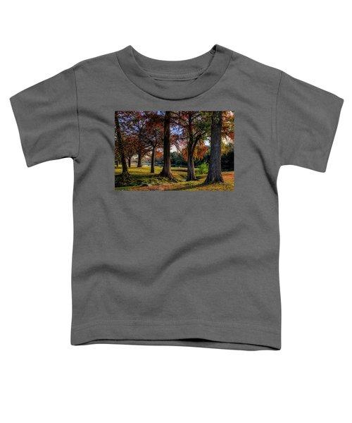 Beginning Of Fall In Texas Toddler T-Shirt