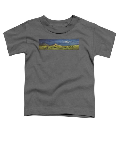 Belt Butte Spring Toddler T-Shirt