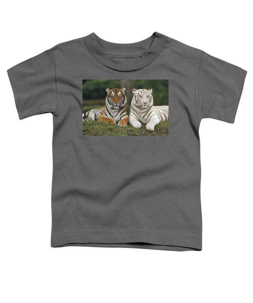 Bengal Tiger Team Toddler T-Shirt