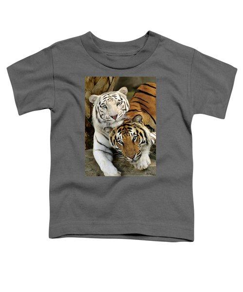 Bengal Tigers At Play Toddler T-Shirt
