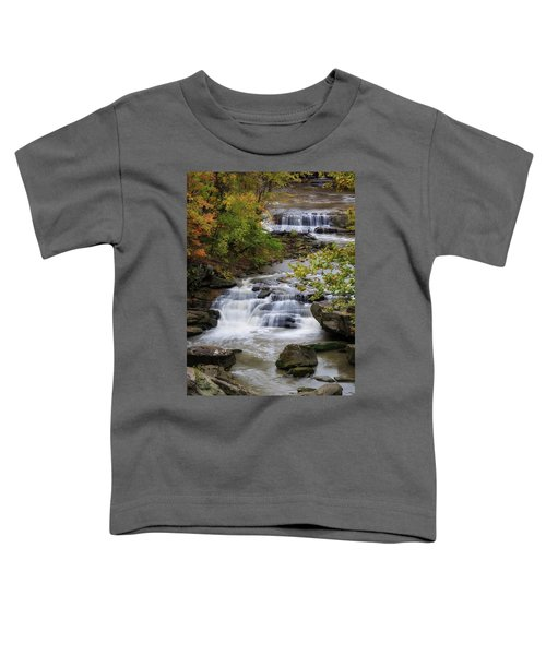 Berea Falls Toddler T-Shirt