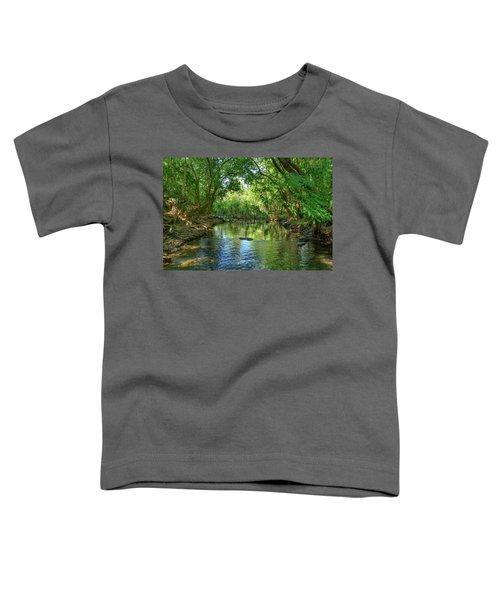 Berry Springs Toddler T-Shirt