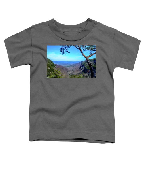 Between The Cliffs Toddler T-Shirt