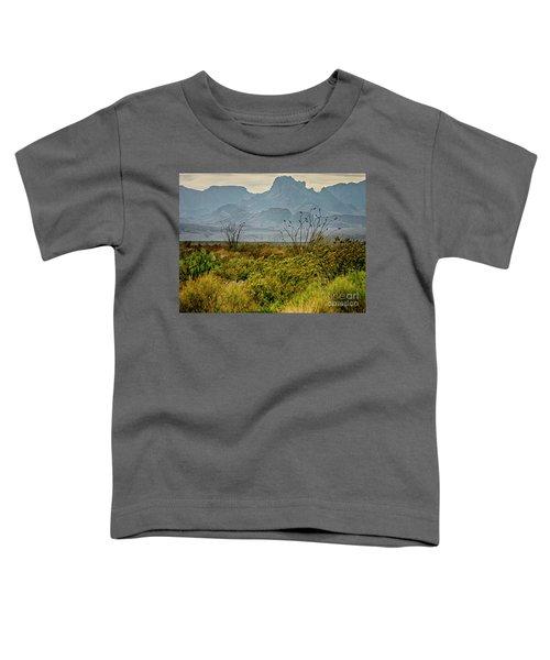 Big Bend Mountains Toddler T-Shirt