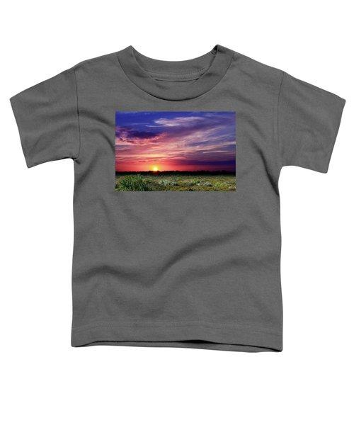 Big Texas Sky Toddler T-Shirt
