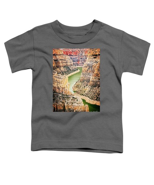 Bighorn River Toddler T-Shirt