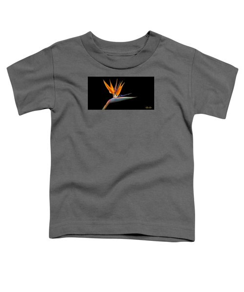 Toddler T-Shirt featuring the photograph Bird Of Paradise Flower On Black by Rikk Flohr
