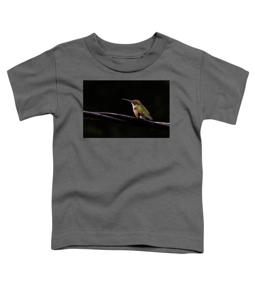 Bird On A Wire Toddler T-Shirt
