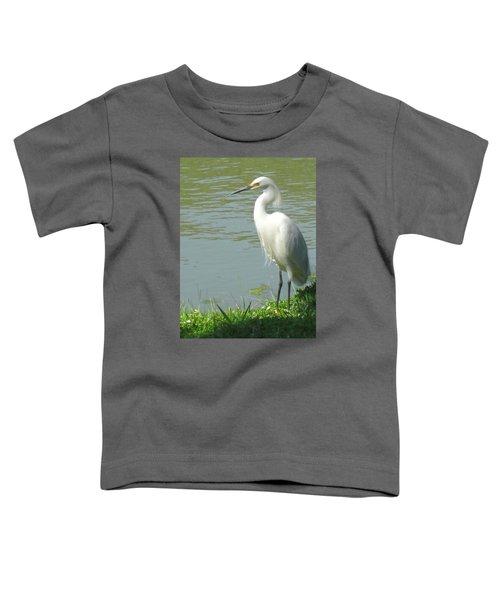 Bird Toddler T-Shirt by Sandy Taylor