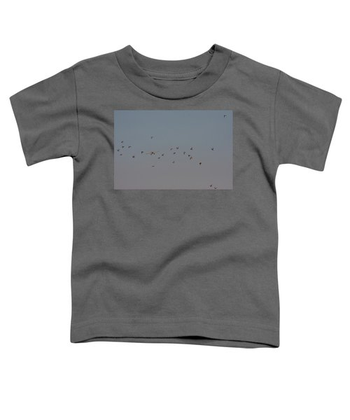 Birds And Airplane Toddler T-Shirt