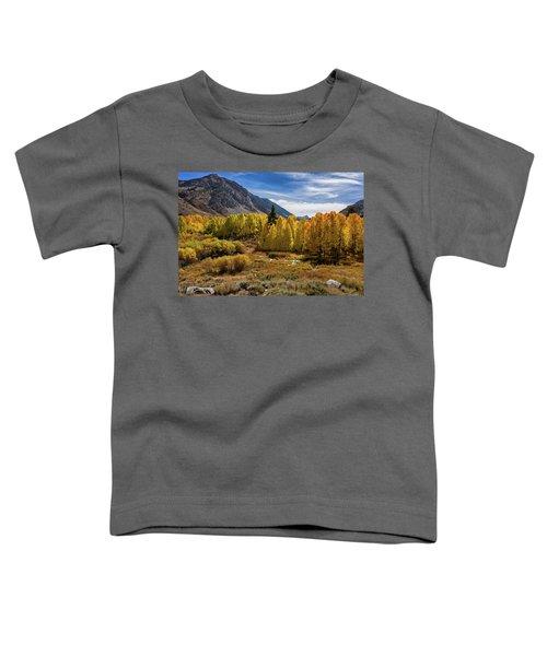 Bishop Creek Aspen Toddler T-Shirt