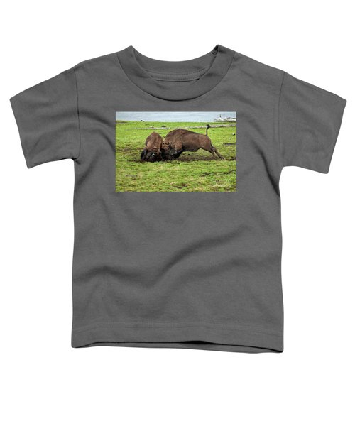 Bison Fighting Toddler T-Shirt